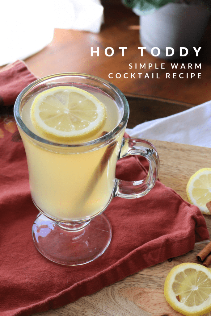 Hot toddy simple warm cocktail recipe